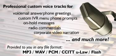 Professional custom voice tracks for telephone answering machines, voicemail, on-hold messages, in-store announcements, interactive multimedia and more.